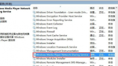 详解Windows Media Player网络共
